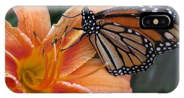 Monarch On Lily IPhone Case
