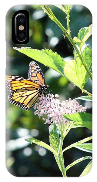 Monarch1 IPhone Case