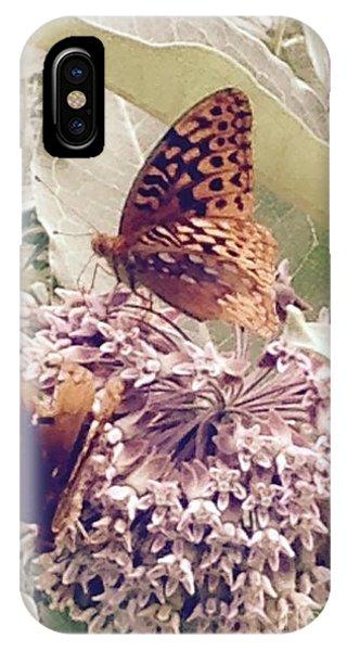 Monarch's On Milkweed IPhone Case