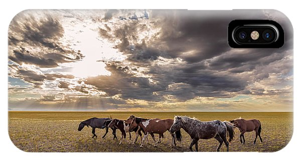 IPhone Case featuring the photograph Mongolian Horses by Hitendra SINKAR