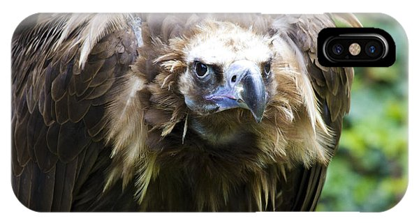 Monk Vulture 3 IPhone Case
