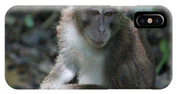 Monkey Business IPhone Case