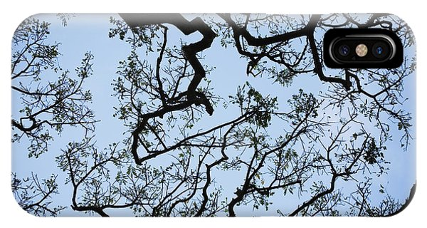 Monkey Pod Tree Patterns IPhone Case