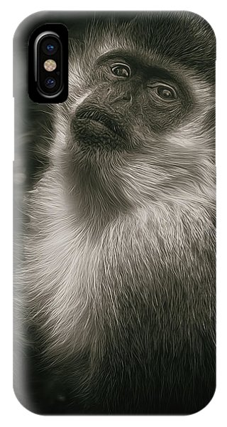 Monkey Portrait IPhone Case