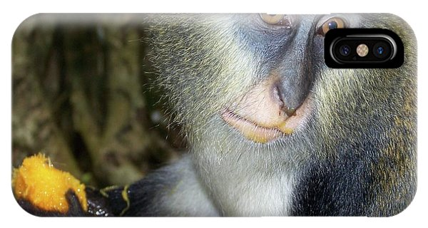 Monkey With His Mango IPhone Case