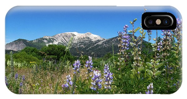 Mammoth Meadow   IPhone Case