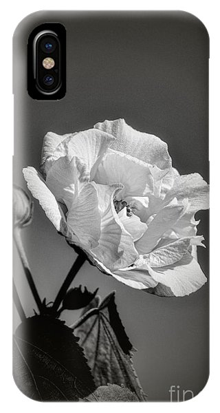 IPhone Case featuring the photograph Monochrome Rose Of Sharon by Elaine Teague