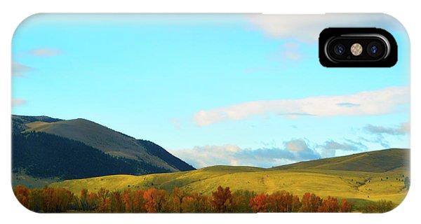 Montana Fall Trees IPhone Case
