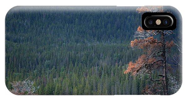Montana Tree Line IPhone Case