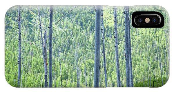 Montana Trees IPhone Case
