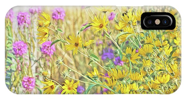 IPhone Case featuring the photograph Montana's Summer Flowers by Jennie Marie Schell