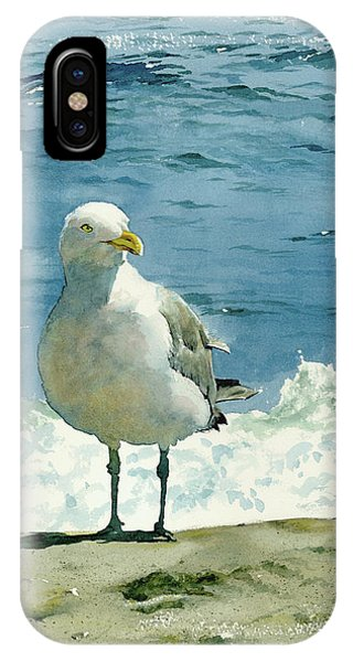 Seascapes iPhone Case - Montauk Gull by Tom Hedderich