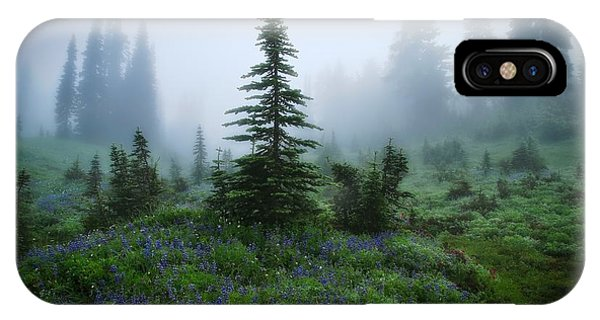 Moody Myrtle Falls Trail At Mount Rainier IPhone Case