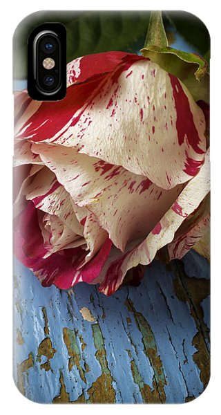 Moody Red White Rose IPhone Case