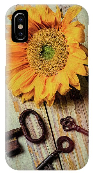 Sunflower Seeds iPhone Case - Moody Sunflower With Keys by Garry Gay