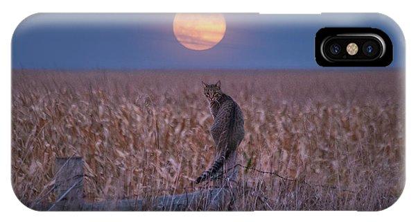 Moon Kitty  IPhone Case
