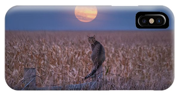 Moon Kitty  IPhone Case
