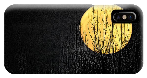 Moon Over The Trees IPhone Case