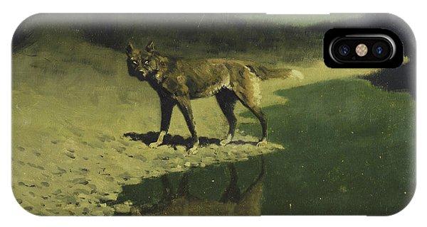 Moonlight, Wolf IPhone Case