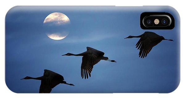 Moonlit Flight IPhone Case