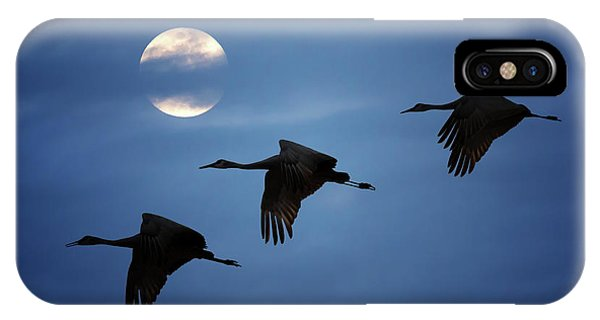 Moonlit Flight IPhone Case