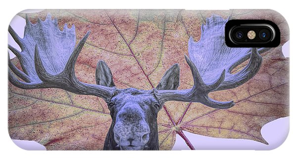 IPhone Case featuring the photograph Moonlit Moose by Ray Shiu