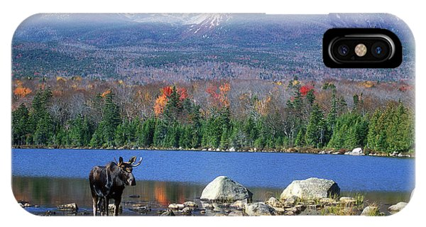 Moose And Mount Katahdin IPhone Case