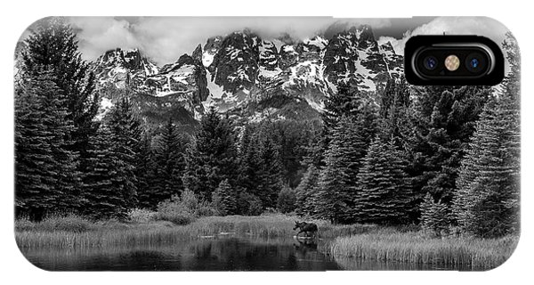 IPhone Case featuring the photograph Moose At Schwabacher's Landing by Gary Lengyel