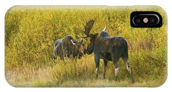 Moose Couple IPhone Case