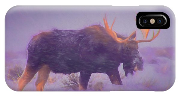 Moose In A Blizzard IPhone Case