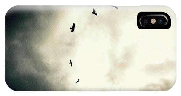 Big Sky Crows IPhone Case