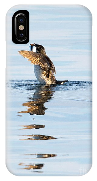 Auklets iPhone Case - More Than A Mouthful by Mike Dawson