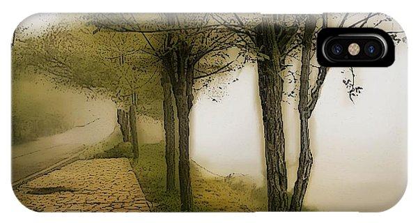 Treeline iPhone Case - Morning Light by Ellen Cannon