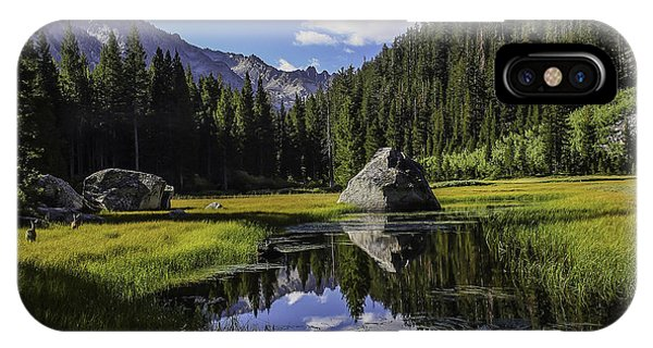 Morning At Grouse Meadow IPhone Case