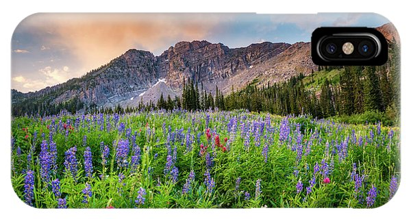 Morning Flowers In Little Cottonwood Canyon, Utah IPhone Case