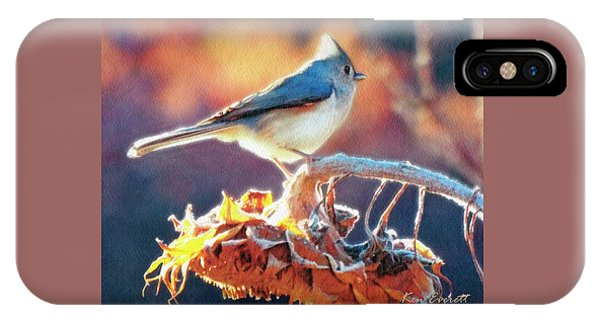Titmouse iPhone Case - Morning Glow by Ken Everett