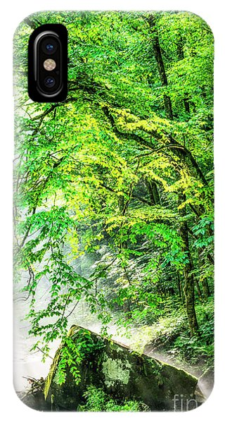 iPhone Case - Morning Light In The Forest by Thomas R Fletcher
