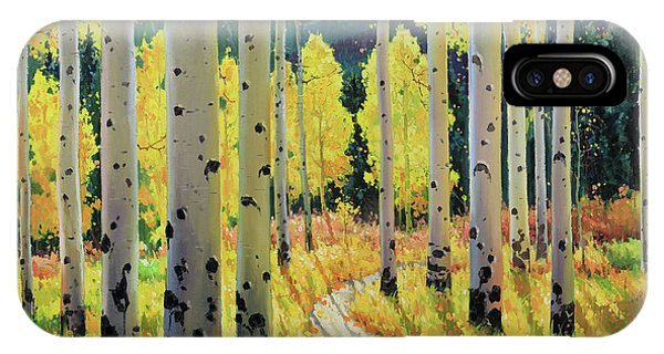 Endless iPhone Case - Morning Lights Of Aspen Trail by Gary Kim