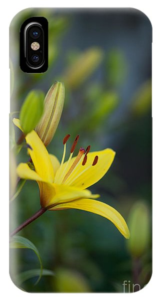Lily iPhone X Case - Morning Lily by Mike Reid