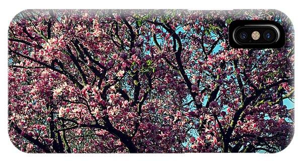 Morning Lit Magnolia IPhone Case