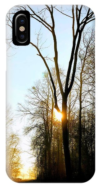 Tree iPhone Case - Morning Mood In The Forest by Matthias Hauser