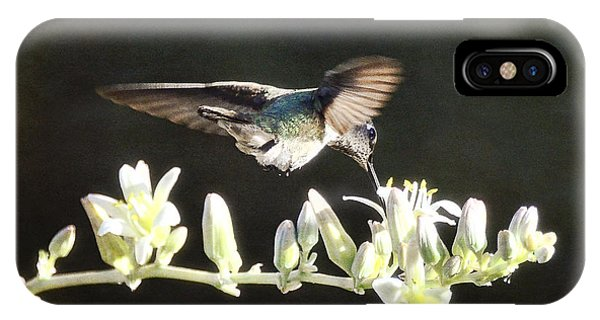 Morning Nectar Flyby  IPhone Case