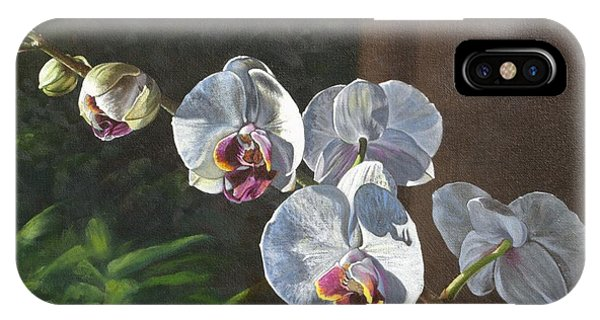Morning Phaleanopsis IPhone Case