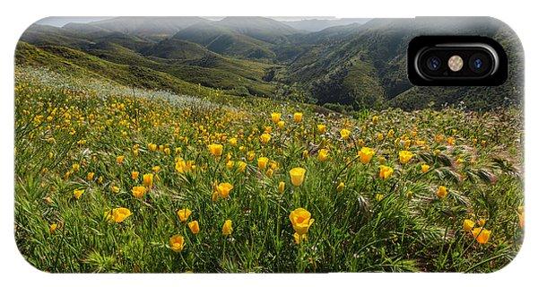 Morning Poppy Hillside IPhone Case