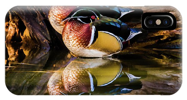 Morning Reflections - Wood Ducks IPhone Case