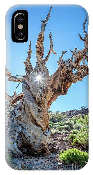 Morning Salutation IPhone Case