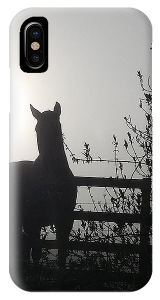 Morning Silhouette #1 IPhone Case