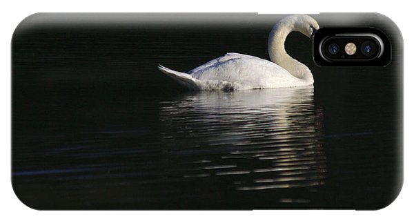 IPhone Case featuring the photograph Morning Swan by Jeremy Hayden