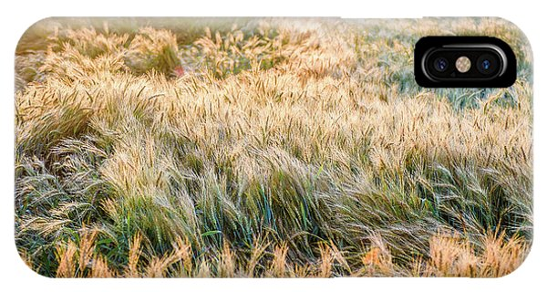 Morning Wheat IPhone Case