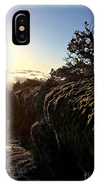 Moss Landing IPhone Case